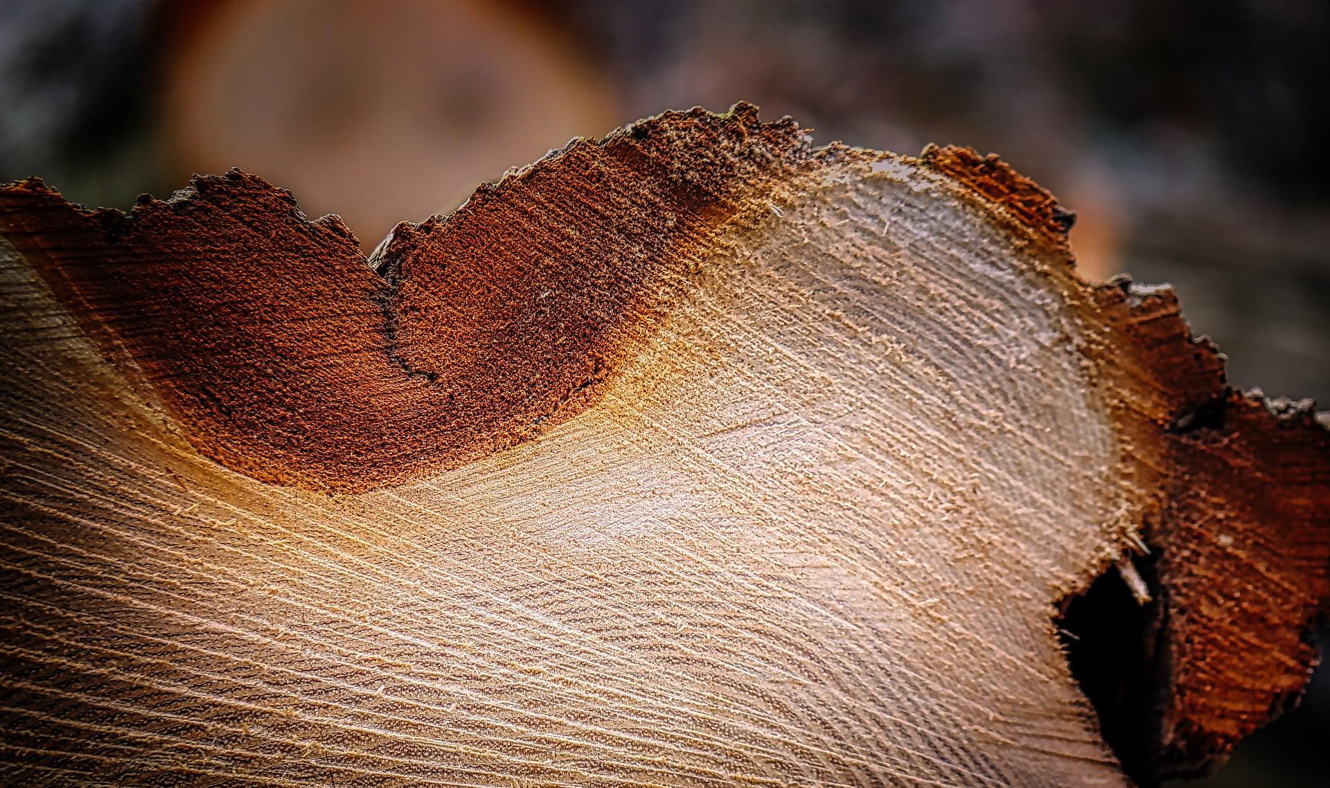 SPIRIT Slovenija išče oblikovalske lesarske presežke leta 2021